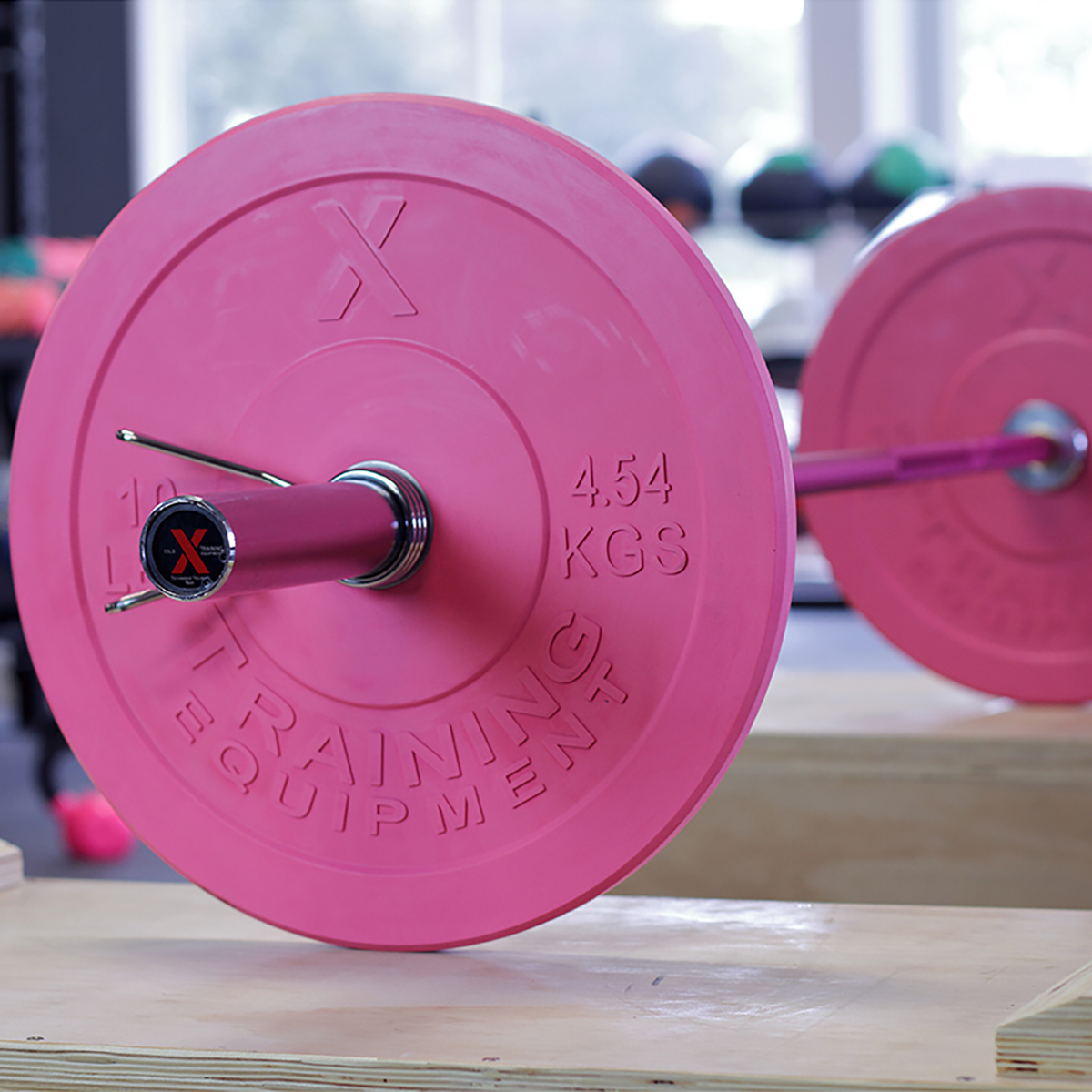 45LB Premium Pink Bumper Plate Pair - Out of Stock