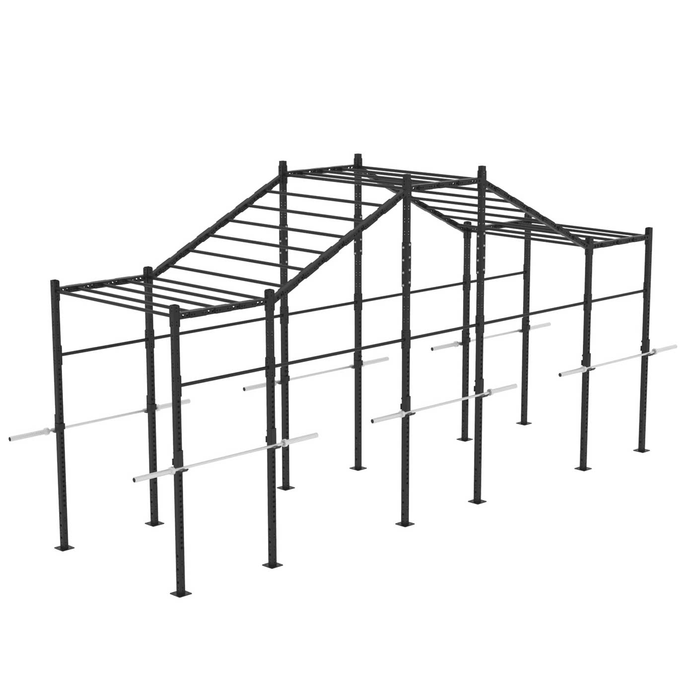 X Training Equipment® Monkey Bar Rig