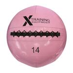 Wall Ball - 14LB - PINK